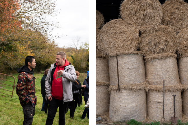 Rigney's Farm and Donal O'Grady's beef farm, Co. Limerick - Photography by Clare Yazbeck