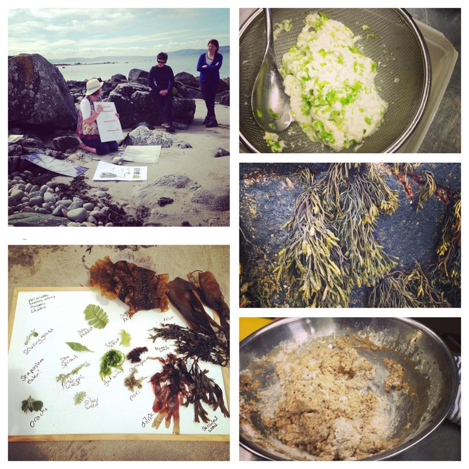 seaweed collage